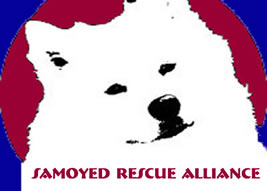 Samoyed Rescue Alliance